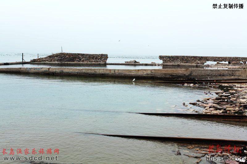 长岛渔家乐旅游网,打造长岛渔家乐旅游信息第一站.乐
